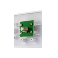 Wall Plate Single Entry PAL to F