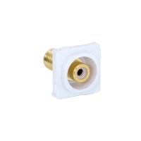 Wall Plate Mechanism Premium RCA - F White